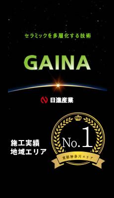gaina_no1_02